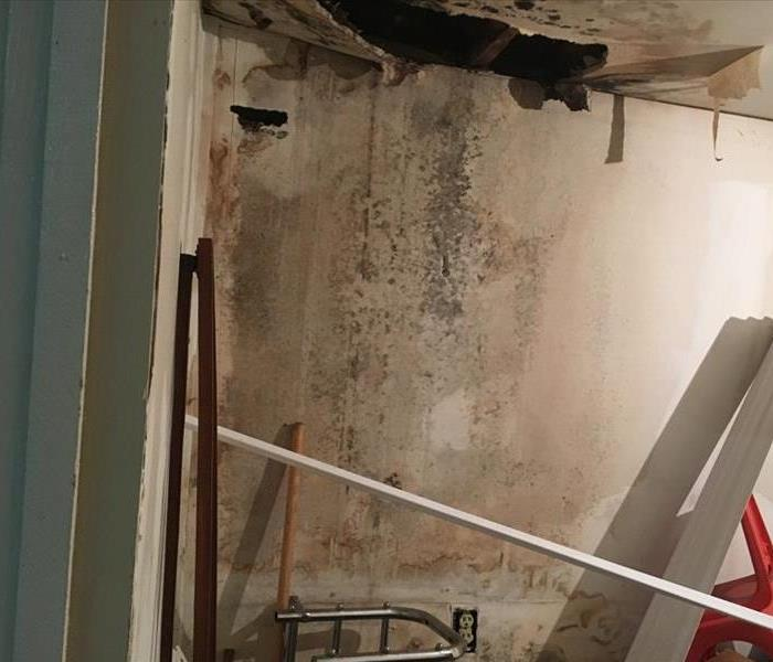 Lincoln County Water and Mold Damage