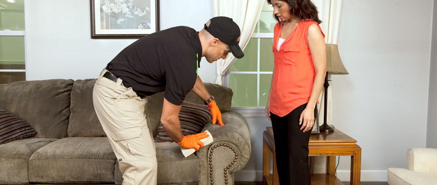 Brookhaven, MS carpet upholstery cleaning