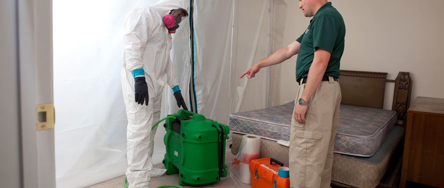 Brookhaven, MS mold removal process
